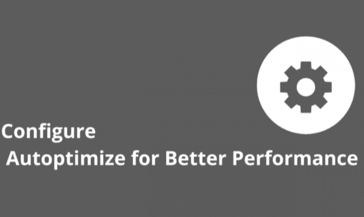 Autoptimize Settings for Best result